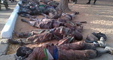 Gov't Report: Army Martyred 348 Nigerians during Zaria Carnage