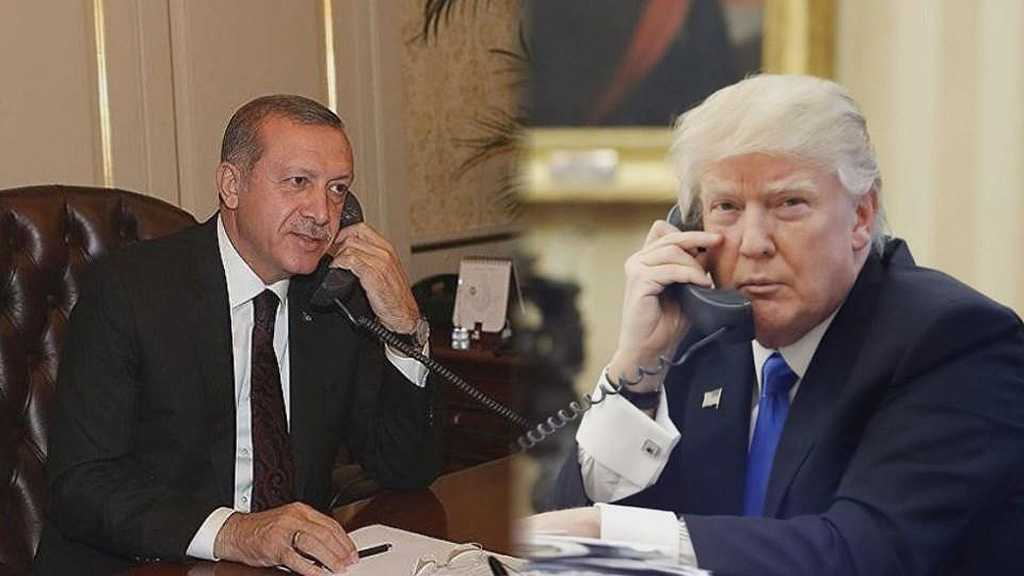 Erdogan Phones Trump: Turkey Ready to Ensure Security of N Syria City