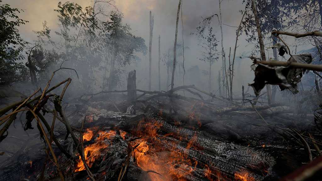 Bolsonaro Bans Land-clearing Fires in Amazon for 60 Days