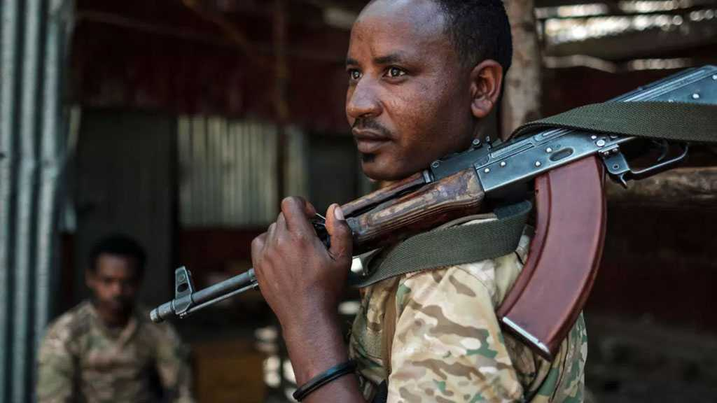 Ethiopian Forces to Take Tigray's Capital 'In A Few Days' - Army